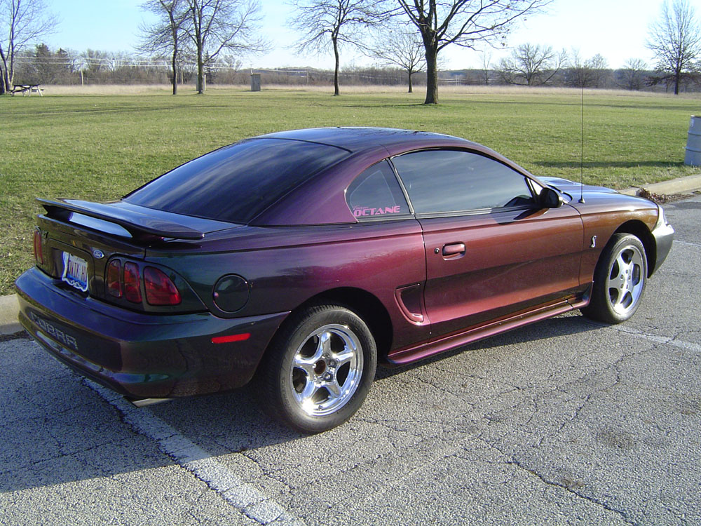 bobby 1996 ford mustang svt cobra. Black Bedroom Furniture Sets. Home Design Ideas